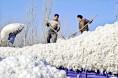 国家发改委:8月份棉花市场短信息