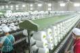 新疆库尔勒开发区纺纱规模达到450万锭