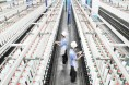纺织行业要坚持科技创新和质量提升双轮驱动发展